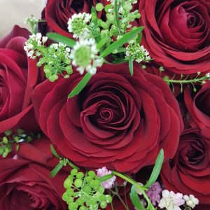 RED ROSES & ROMANTIC